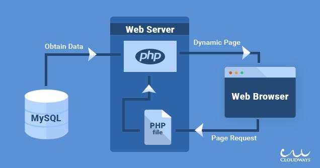 MySQL-WebServer