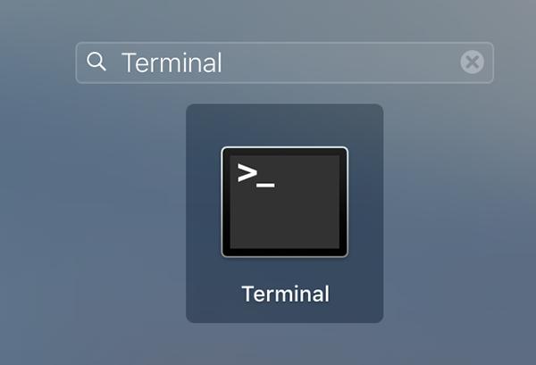 dockdivider-terminal