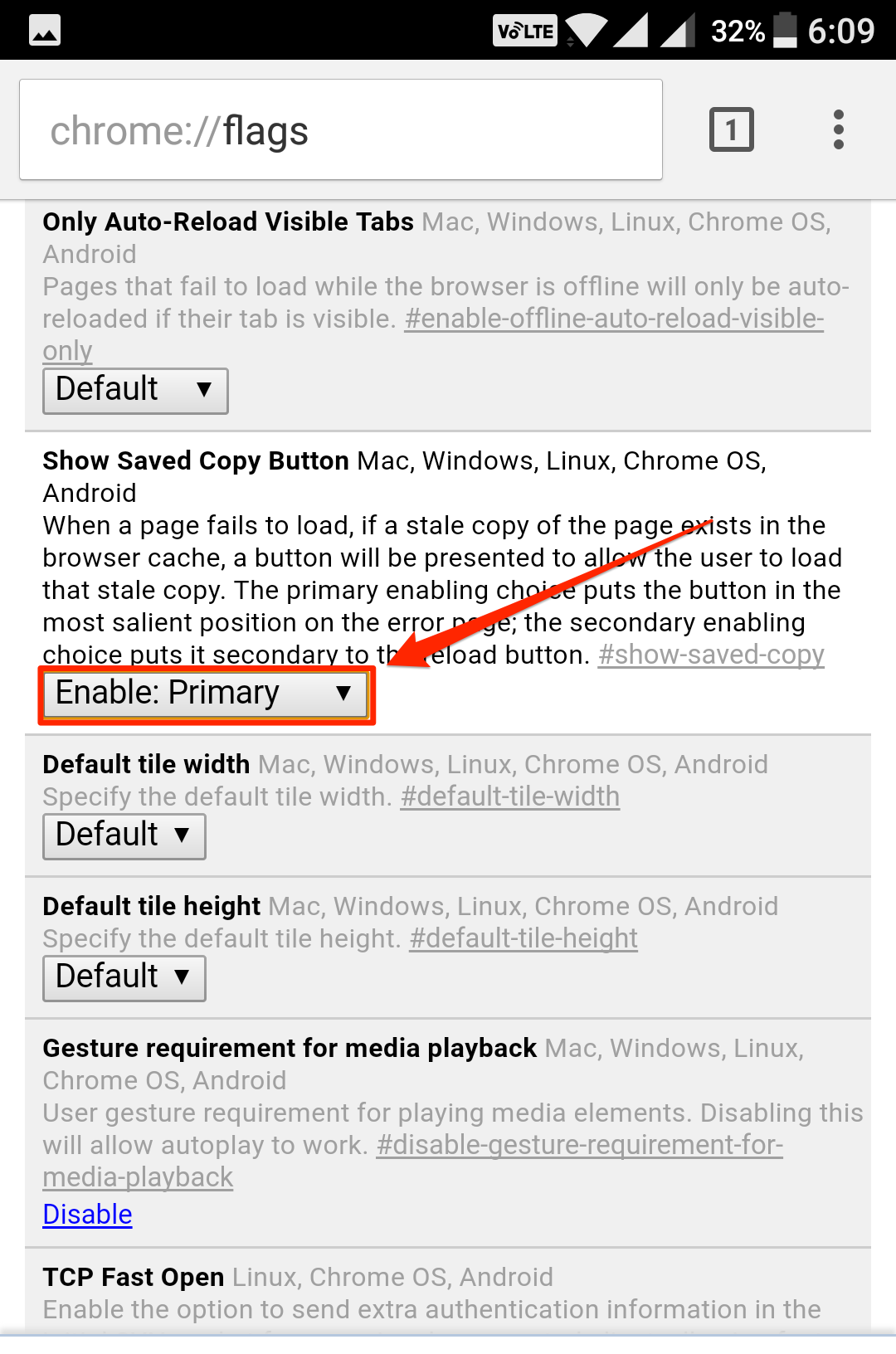offline-browsing-chrome-enable