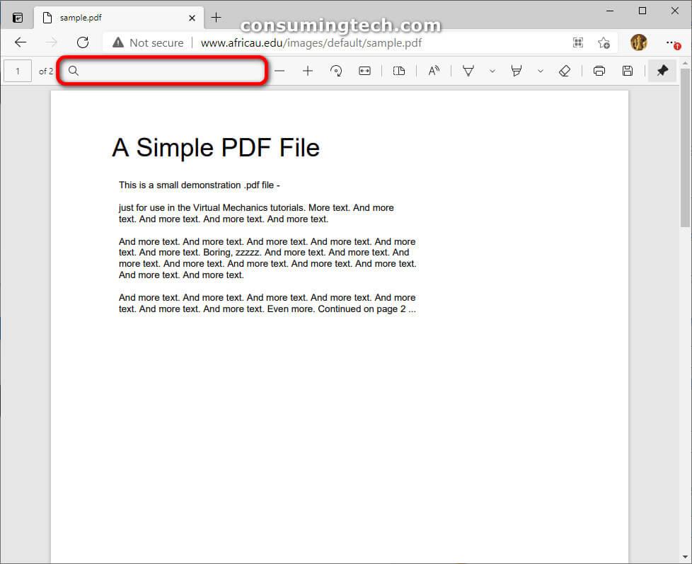 Microsoft Edge Canary 89.0.757.0: PDF search icon
